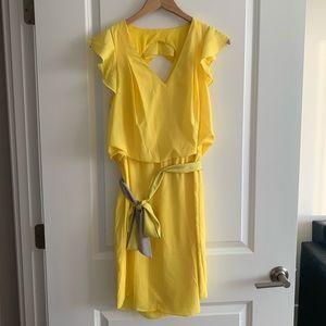 Ruffled Jessica Simpson Dress